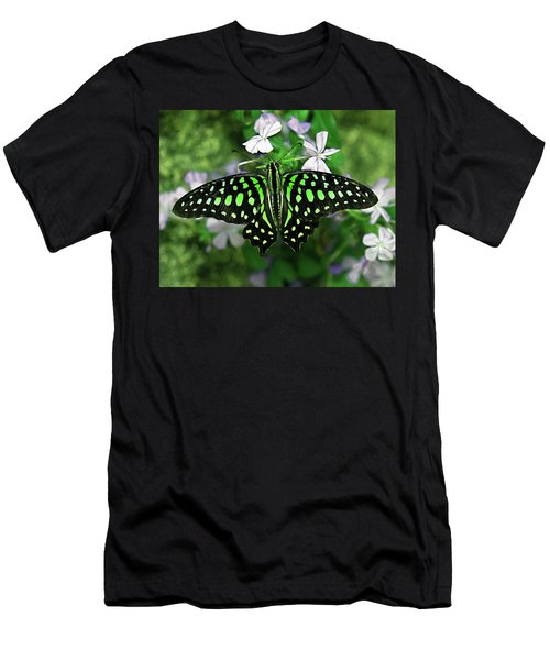 Neon --- Tailed Jay Butterfly Men's T-Shirt (Athletic Fit)