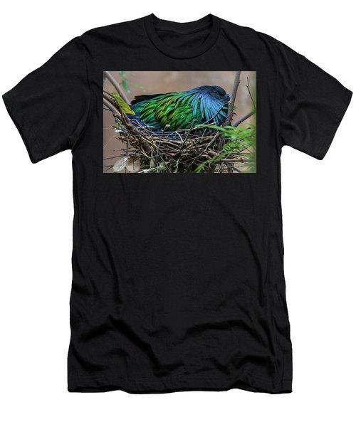 Nesting Men's T-Shirt (Athletic Fit)