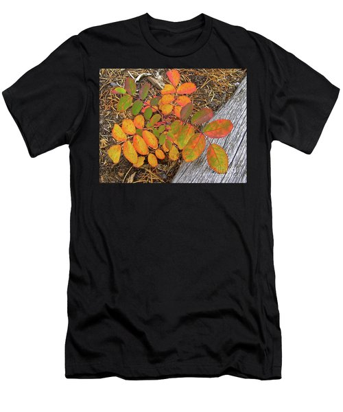 New And Old Life Cycles Men's T-Shirt (Athletic Fit)