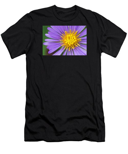 New England Aster Men's T-Shirt (Athletic Fit)