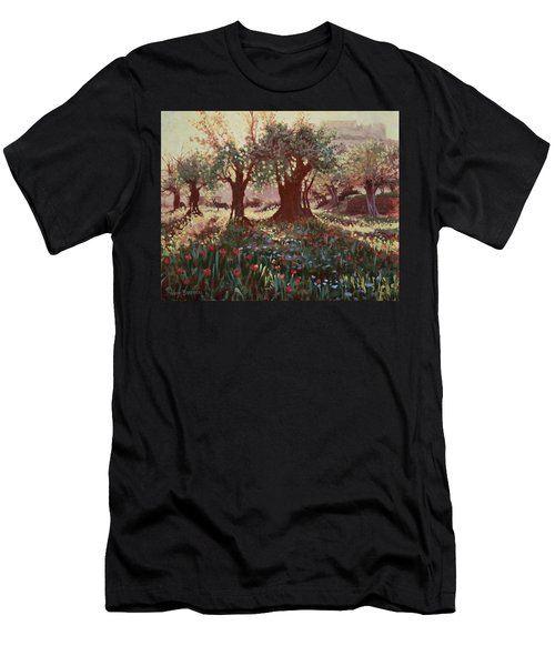 Nimrods Castle, Northern Galilee, Israel Men's T-Shirt (Athletic Fit)