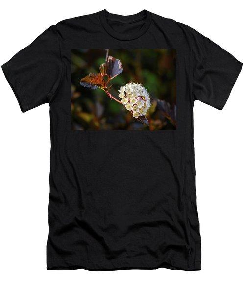 Ninebark Summer Wine Men's T-Shirt (Athletic Fit)