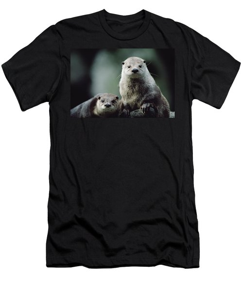 North American River Otter Lontra Men's T-Shirt (Slim Fit) by Gerry Ellis