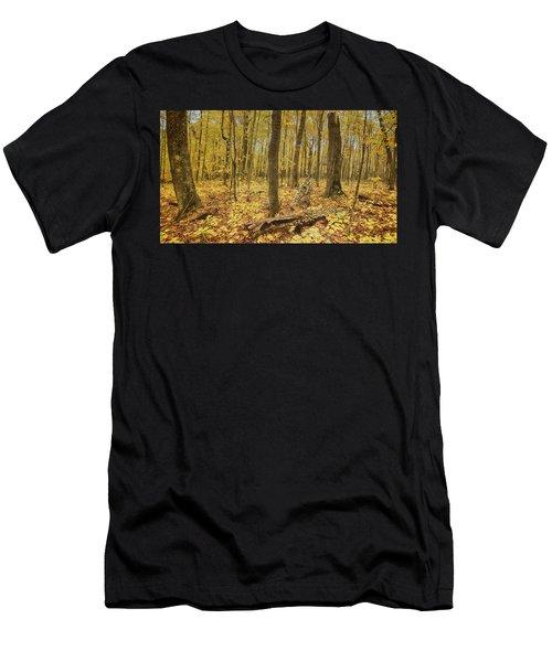 North Shore Forest Men's T-Shirt (Athletic Fit)