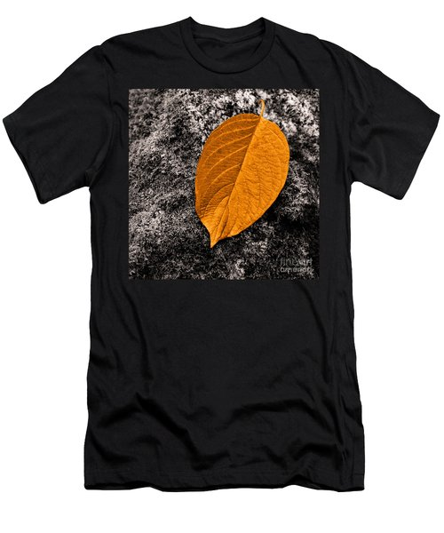 November Leaf Men's T-Shirt (Athletic Fit)