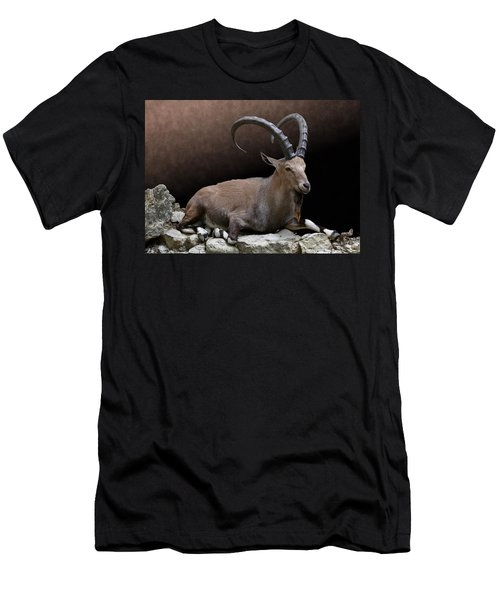 Nubian Ibex Portrait Men's T-Shirt (Athletic Fit)