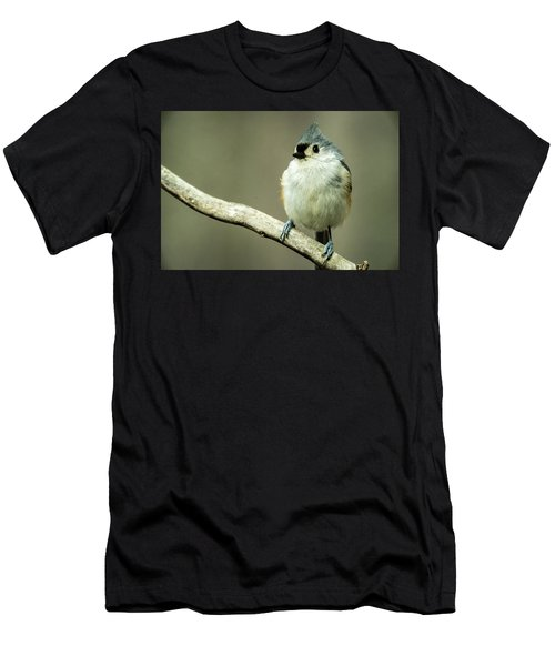 Titmouse Thinking About Weighty Matters Men's T-Shirt (Athletic Fit)