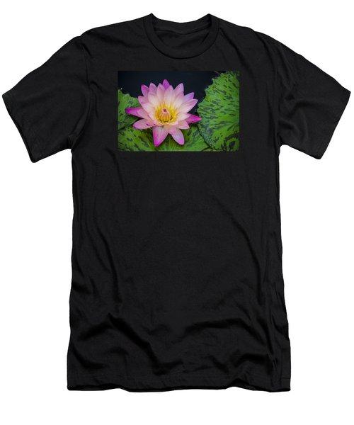 Nymphaea Hot Pink Water Lily Men's T-Shirt (Slim Fit) by Deborah Smolinske