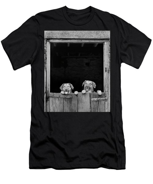 Nz Huntaways, Forever Happy And Nosey. Working Sheep Dogs Men's T-Shirt (Athletic Fit)