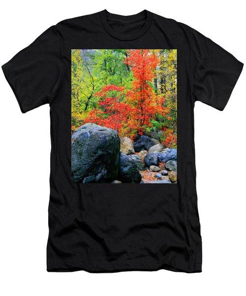 Oak Creek Canyon Red Men's T-Shirt (Athletic Fit)