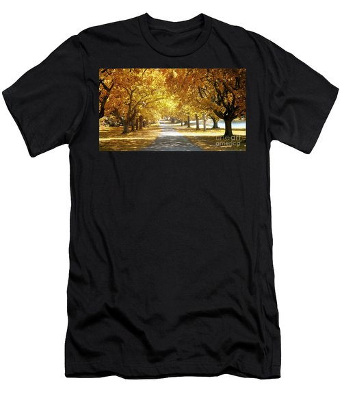 Oak Tree Avenue In Autumn Men's T-Shirt (Athletic Fit)