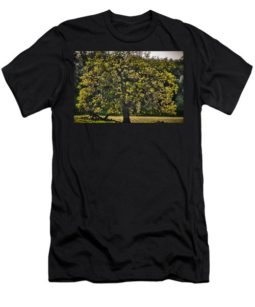 Oak Tree New Green Leaves Men's T-Shirt (Athletic Fit)
