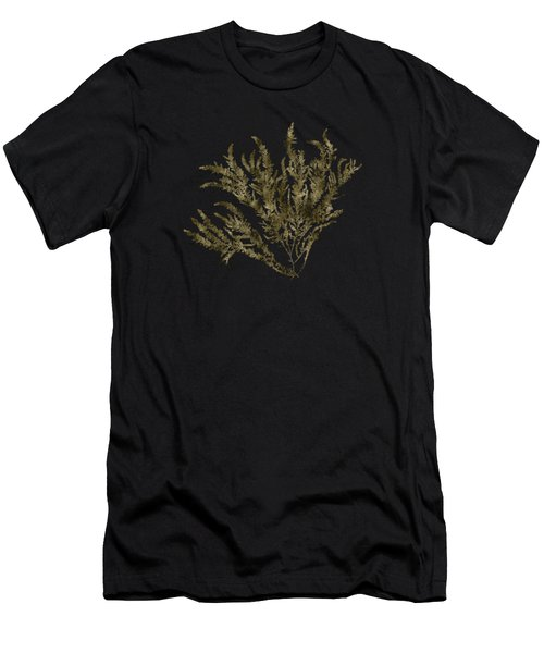 Ocean Seaweed Plant Art Ptilota Sericea Square Men's T-Shirt (Athletic Fit)