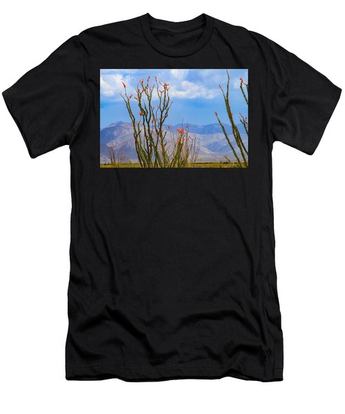 Ocotillo Cactus With Mountains And Sky Men's T-Shirt (Athletic Fit)
