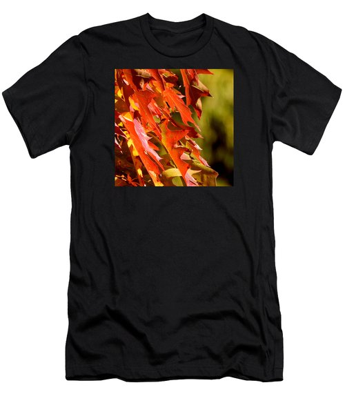 October Oak Leaves Men's T-Shirt (Athletic Fit)