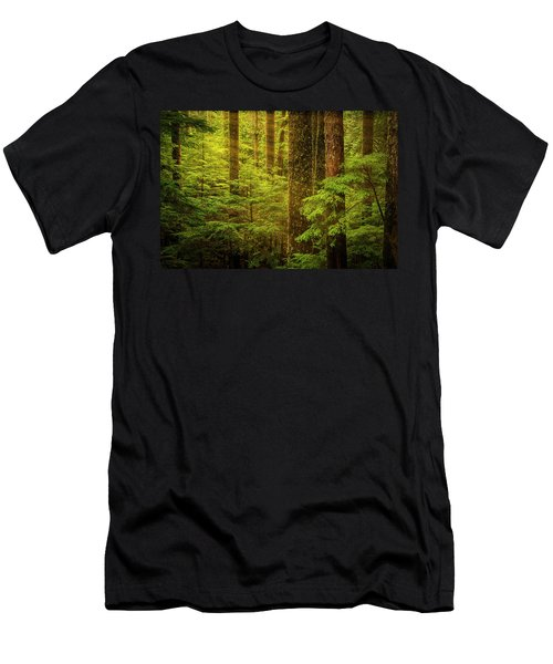 Of Elves And Faeries Men's T-Shirt (Athletic Fit)