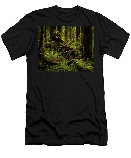 Old Growth Forest Men's T-Shirt (Athletic Fit)
