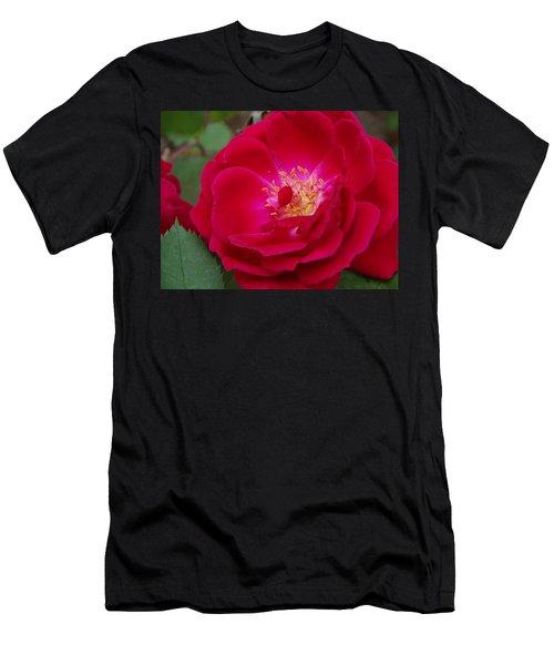 Old Homestead Rose Men's T-Shirt (Athletic Fit)