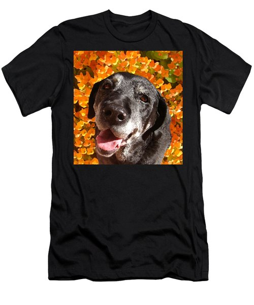 Old Labrador Men's T-Shirt (Athletic Fit)