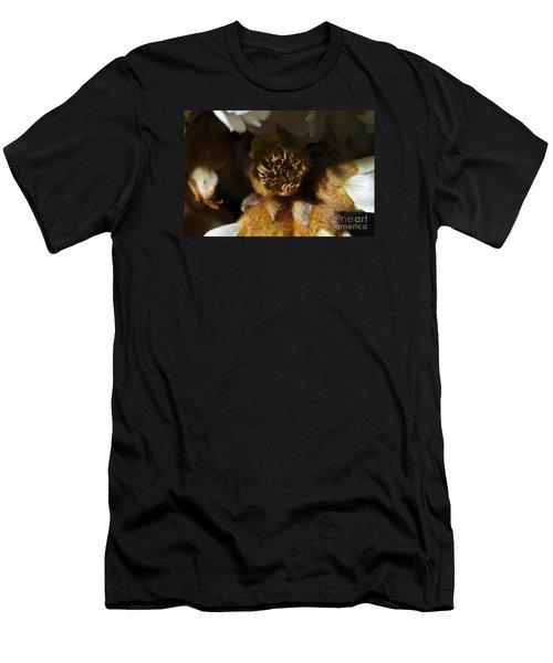 Old Loquat Tree Flower Men's T-Shirt (Athletic Fit)