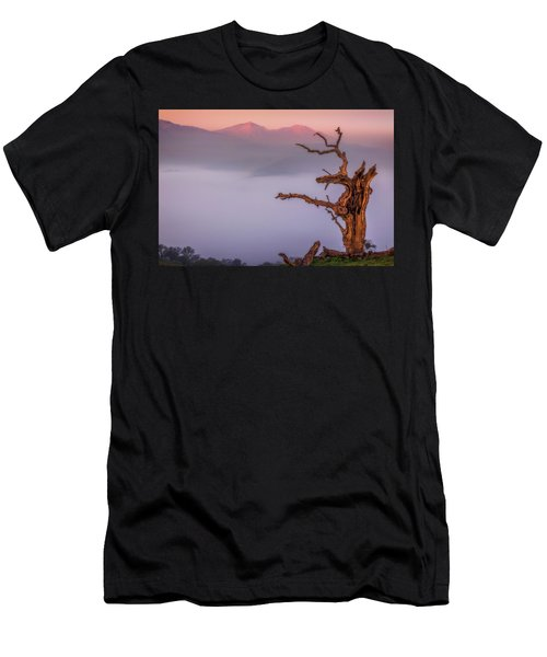 Old Oak And Mt. Diablo On A Foggy Morning Men's T-Shirt (Athletic Fit)