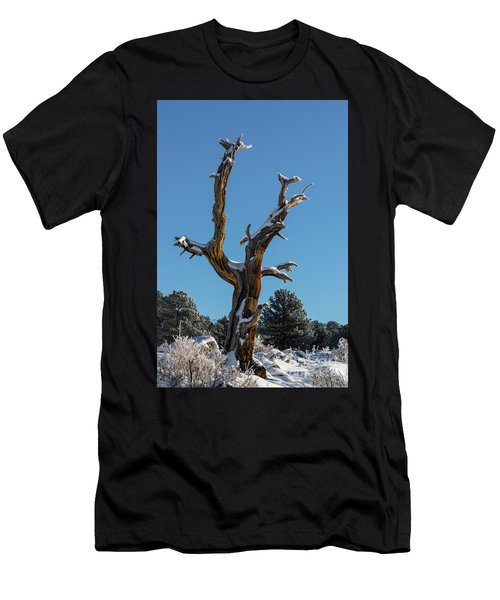Old Tree - 9167 Men's T-Shirt (Athletic Fit)