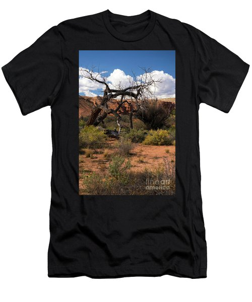 Old Tree In Capital Reef National Park Men's T-Shirt (Athletic Fit)