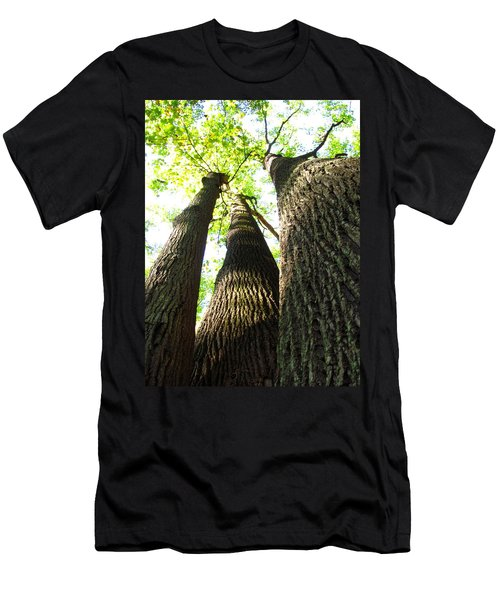 Oldgrowth Tulip Tree Men's T-Shirt (Athletic Fit)