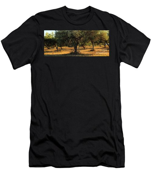 Olive Grove 3 Men's T-Shirt (Athletic Fit)