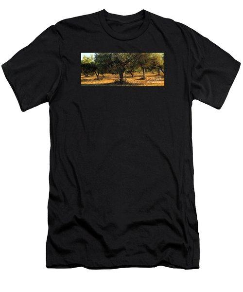 Olive Grove 3 Men's T-Shirt (Athletic Fit)