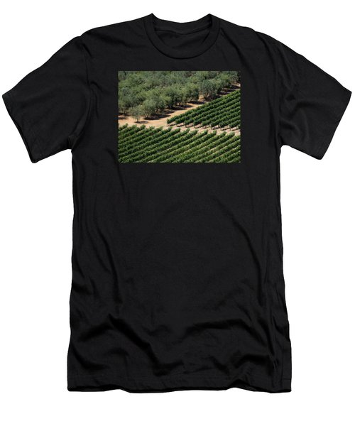 Olive Grove Meets Vineyard Men's T-Shirt (Athletic Fit)