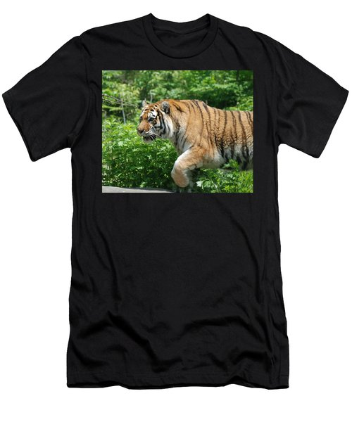 Men's T-Shirt (Slim Fit) featuring the photograph On The Prowl by Richard Bryce and Family