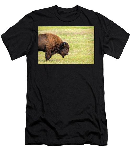 One Bison Men's T-Shirt (Athletic Fit)