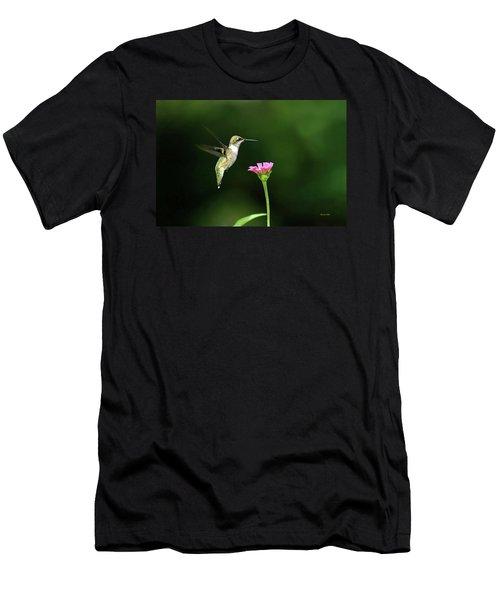 One Hummingbird Men's T-Shirt (Athletic Fit)