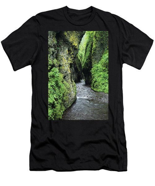 Oneonta Creek And Gorge Men's T-Shirt (Athletic Fit)