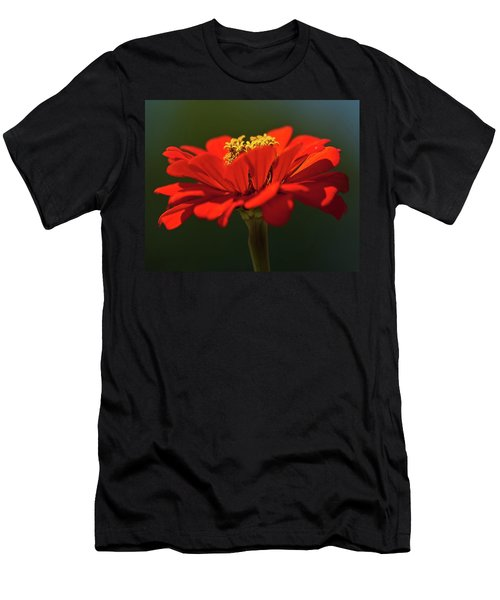 Men's T-Shirt (Athletic Fit) featuring the photograph Orange Aster-a Bee's Eye View by Onyonet  Photo Studios
