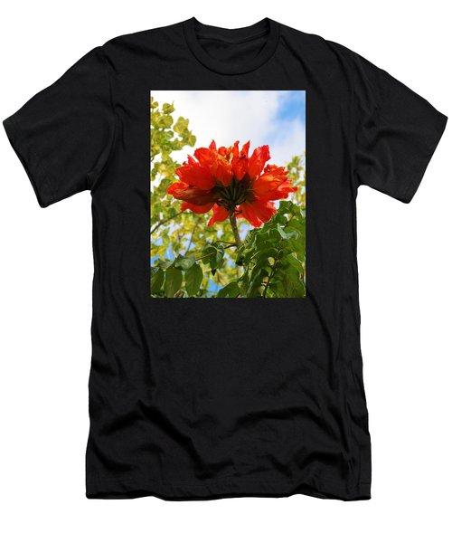 Orange Beauty Men's T-Shirt (Athletic Fit)