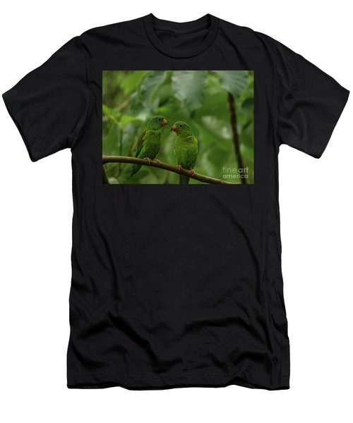 Orange-chinned Parakeets-  Men's T-Shirt (Athletic Fit)