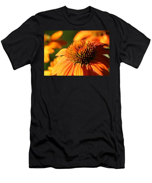 Orange Coneflower At First Light Men's T-Shirt (Athletic Fit)