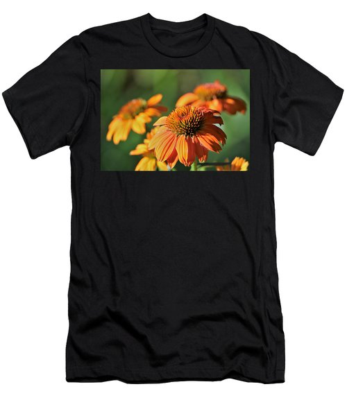 Orange Cone Flowers In Morning Light Men's T-Shirt (Athletic Fit)
