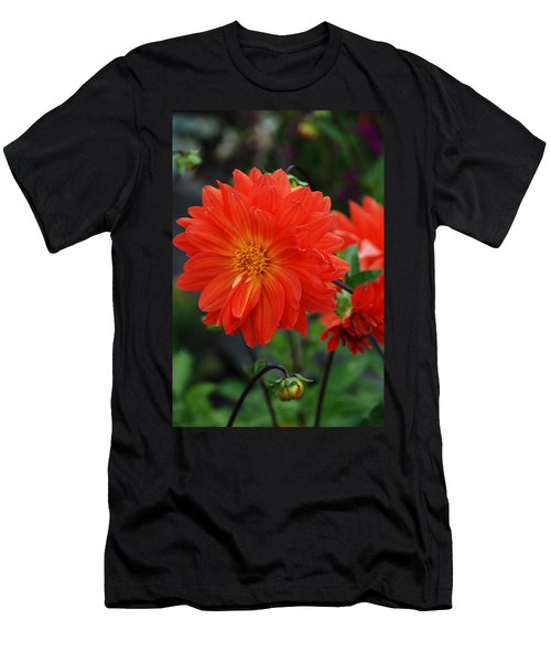 Orange Dahlia Men's T-Shirt (Athletic Fit)