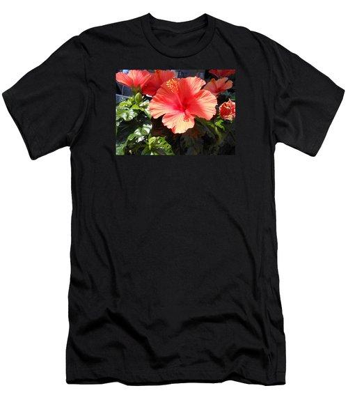 Orange Hibiscus Men's T-Shirt (Slim Fit) by Kay Gilley