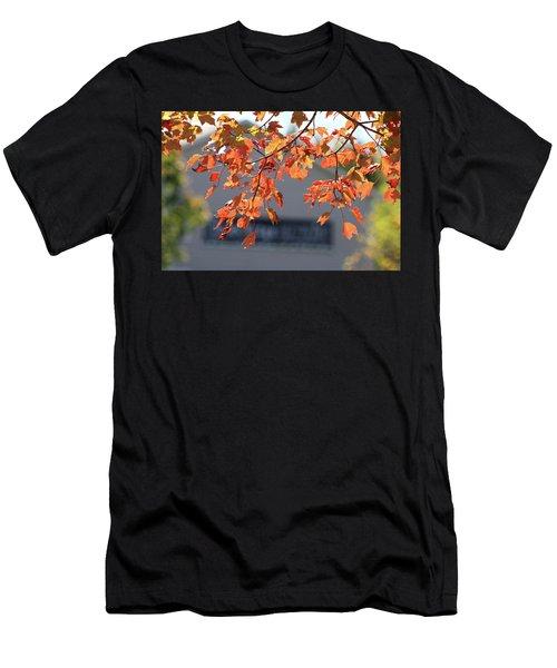 Orange Leaves Of Autumn Men's T-Shirt (Athletic Fit)