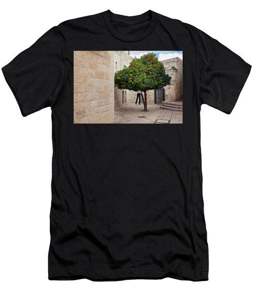 Orange Tree Men's T-Shirt (Athletic Fit)