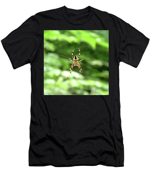 Orb Weaver Men's T-Shirt (Athletic Fit)