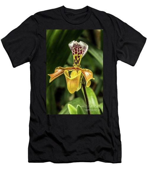 Orchid Men's T-Shirt (Athletic Fit)