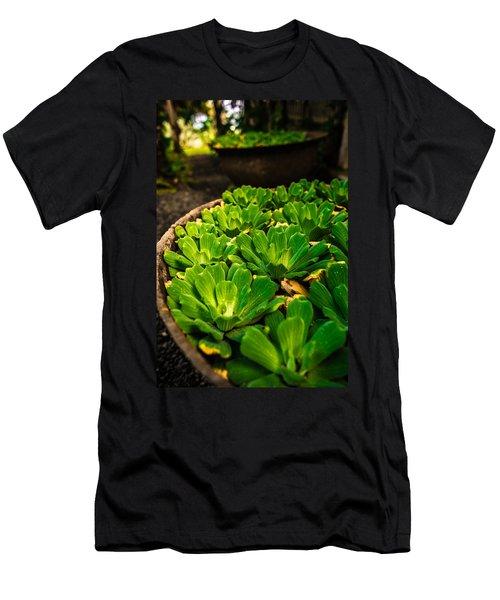 Orchid Pond Men's T-Shirt (Athletic Fit)