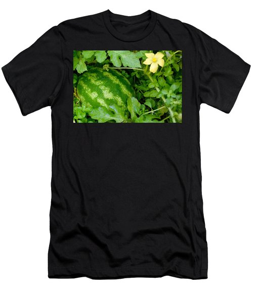 Organic Watermelon Men's T-Shirt (Athletic Fit)