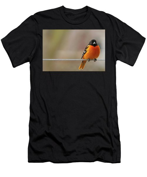 Oriole On The Line Men's T-Shirt (Athletic Fit)