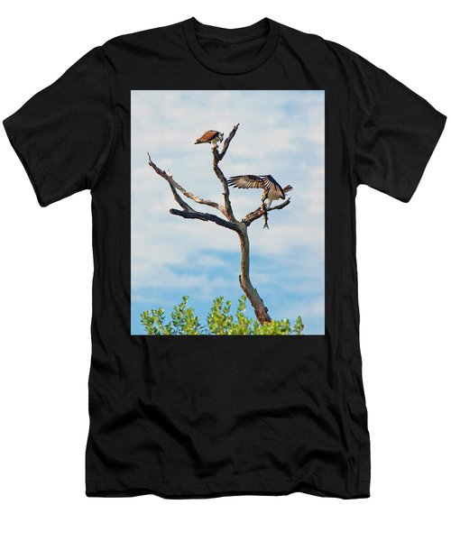 Osprey Feast Men's T-Shirt (Athletic Fit)